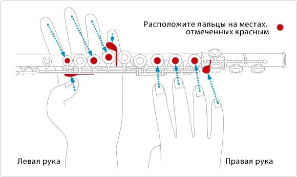положение пальцев на поперечной флейте